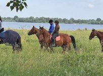 Ponykamp De Maasruiters Megen 2017